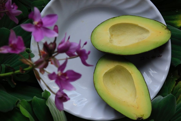 avocado split in half on a white plate
